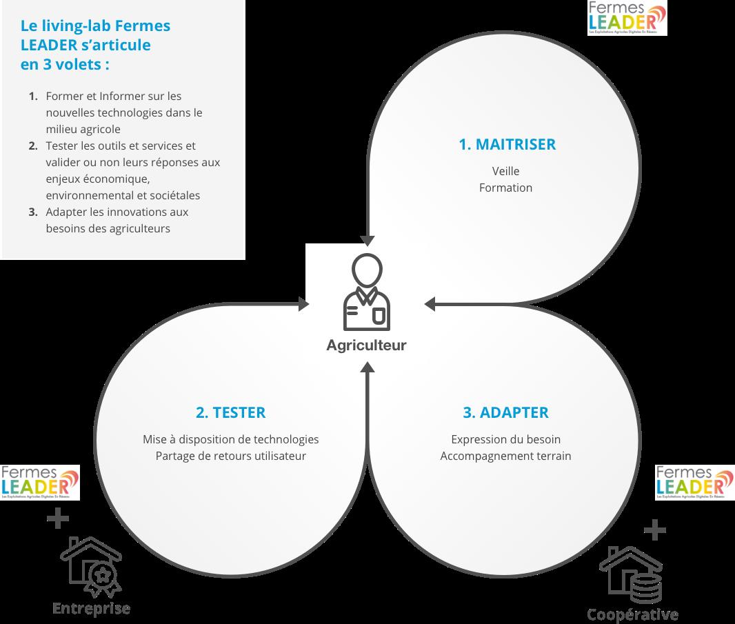 Schéma Objectifs actions réseau Fermes LEADER