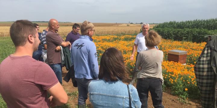 Les agriculteurs en visite sur Openfield