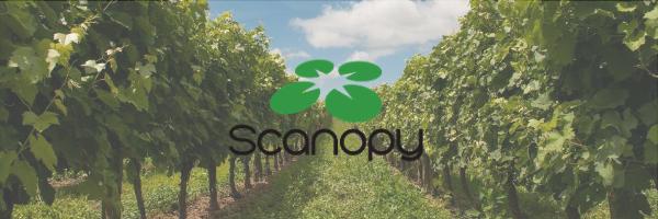 Scanopy – Service de cartographie par drone clés en main