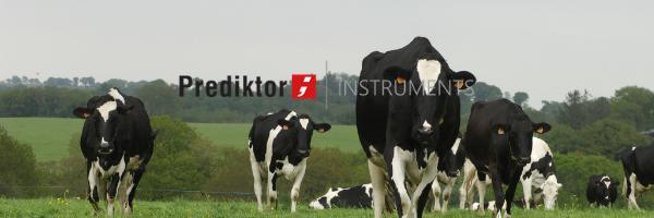 Prediktor – Solution agile pour l'élevage