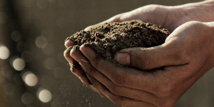 Ces startups qui analysent la santé des sols : GreenBack, STENON, SoilOptix…