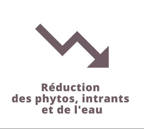 Réduction des phytos, intrants et de l'eau