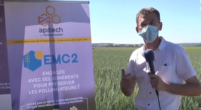 En direct d'EMC2 : Quel intérêt de suivre l'activité des abeilles ?